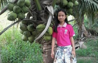 มะพร้าวน้ำหอมต้นเตี้ย สวนไทยเซ็นทรัล การ์เด้น