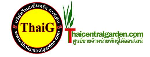 ThaiG ไทยเซ็นทรัลการ์เด้น logo
